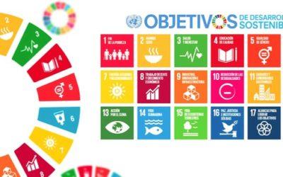 El Plan Estatal de Desarrollo: ¿Cómo Orientar la Función Pública Hacia el Logro de Objetivos del Desarrollo