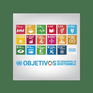 El Plan Estatal de Desarrollo: ¿Cómo Orientar la Función Pública Hacia el Logro de Objetivos del Desarrollo?