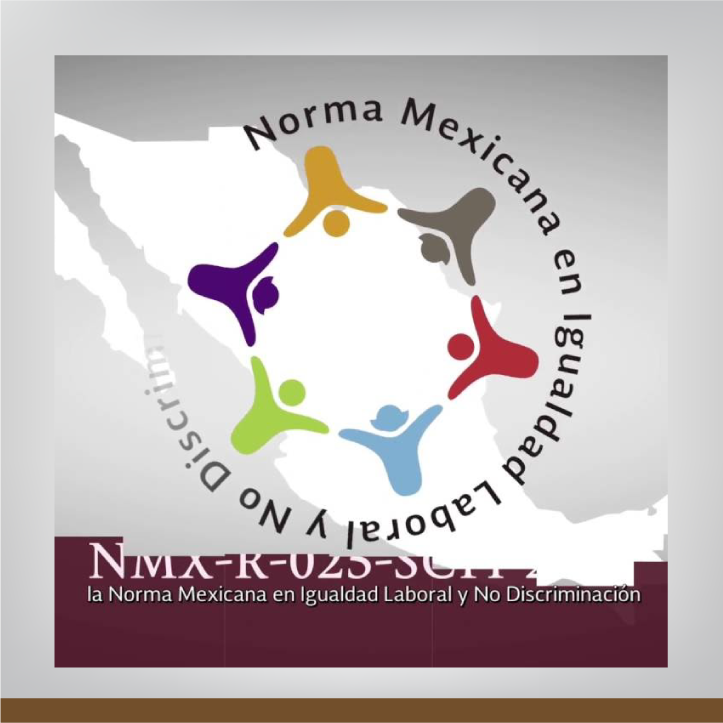 Inducción a la Norma Mexicana: Igualdad Laboral y No Discriminación (taller)