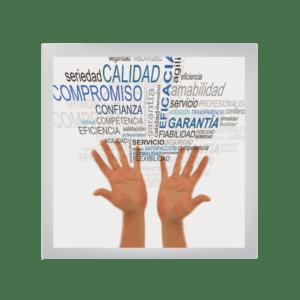 Los Valores y su Impacto en la Organización